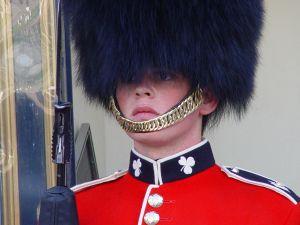 english-guard-444239-m