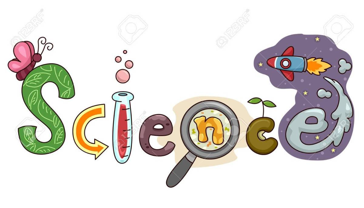science 2nd level